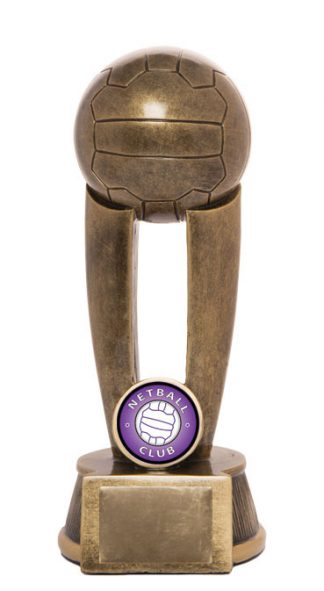 Netball Trophy 736/8B 175mm