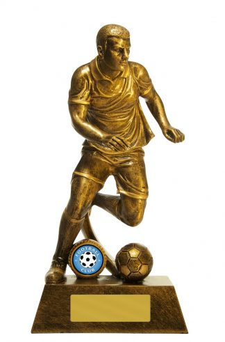Football (Soccer)  Trophy 762G/9ME 250mm