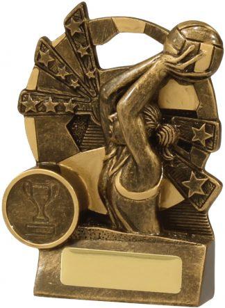 Netball Trophy 13891L 110mm