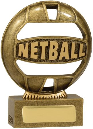 Netball Trophy 13937AA 110mm