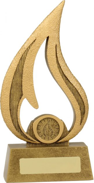 Academic Trophies Trophy A1825C 210mm